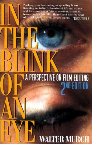 In the Blink of a Eye Buch